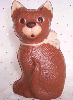 a picture of a chocolate cat